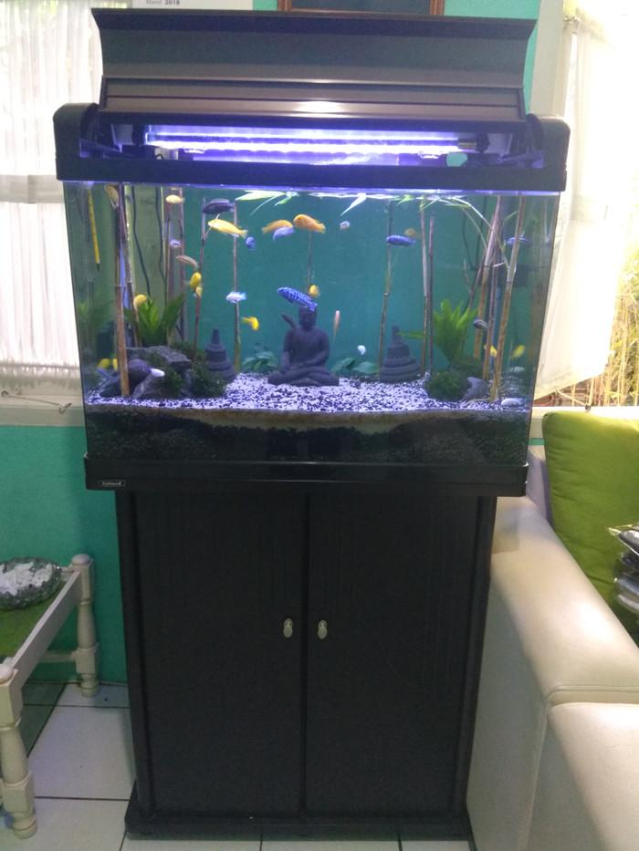 Jual Aquarium Akuarium Ikan Hias Merk Fishland Dki Jakarta Bimz Aquatic Tokopedia