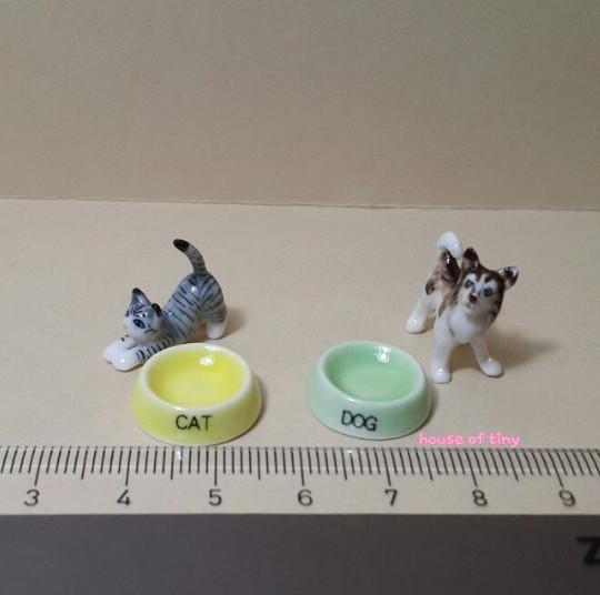 harga Miniatur keramik dog/cat bowl #miniatur #miniature #cute Tokopedia.com