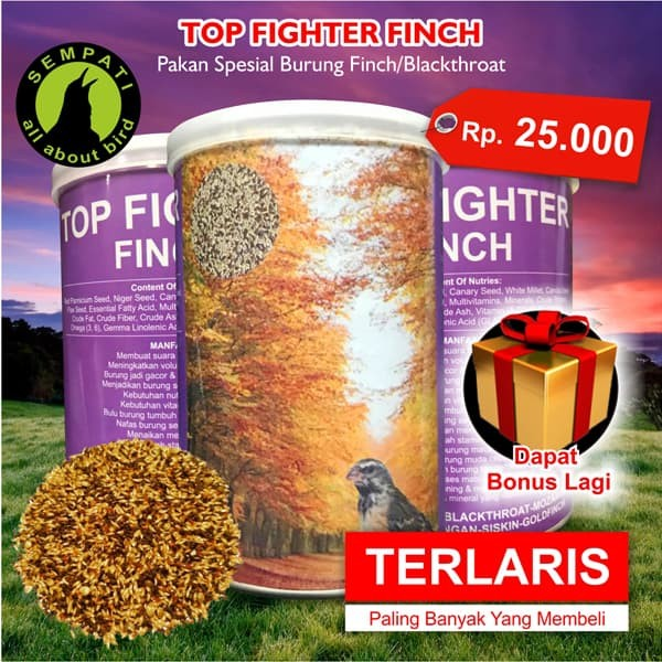 harga Top fighter finch sempati pakan burung finch blackthroat mozambik ja18 Tokopedia.com