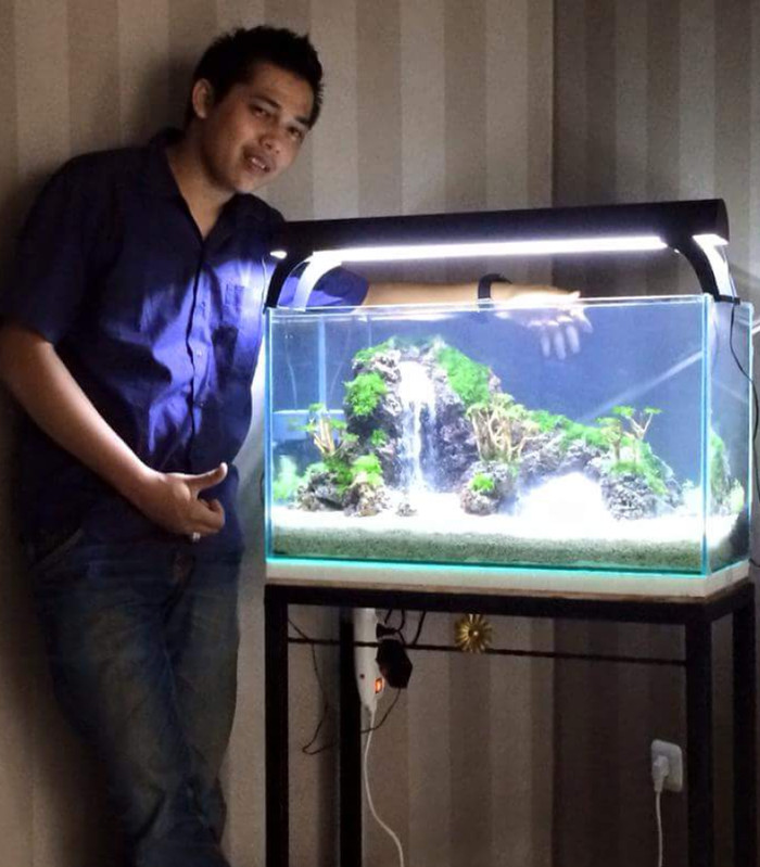 440 Foto Design Aquarium Hias HD Gratid Unduh Gratis