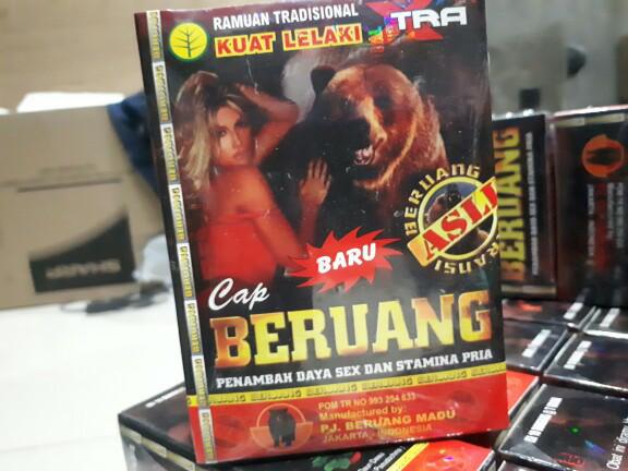 harga Beruang jamu Tokopedia.com