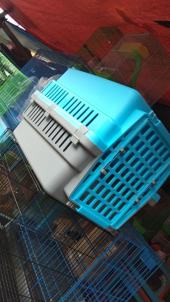 harga Pet cargo size m Tokopedia.com