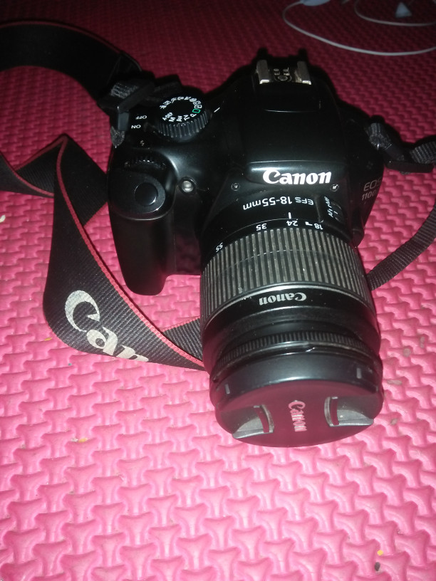 CANON D1100 DRIVERS FOR WINDOWS XP