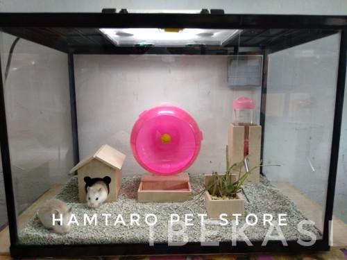 harga Kandang hamster lucu terarium / aquarium ukuran besar Tokopedia.com