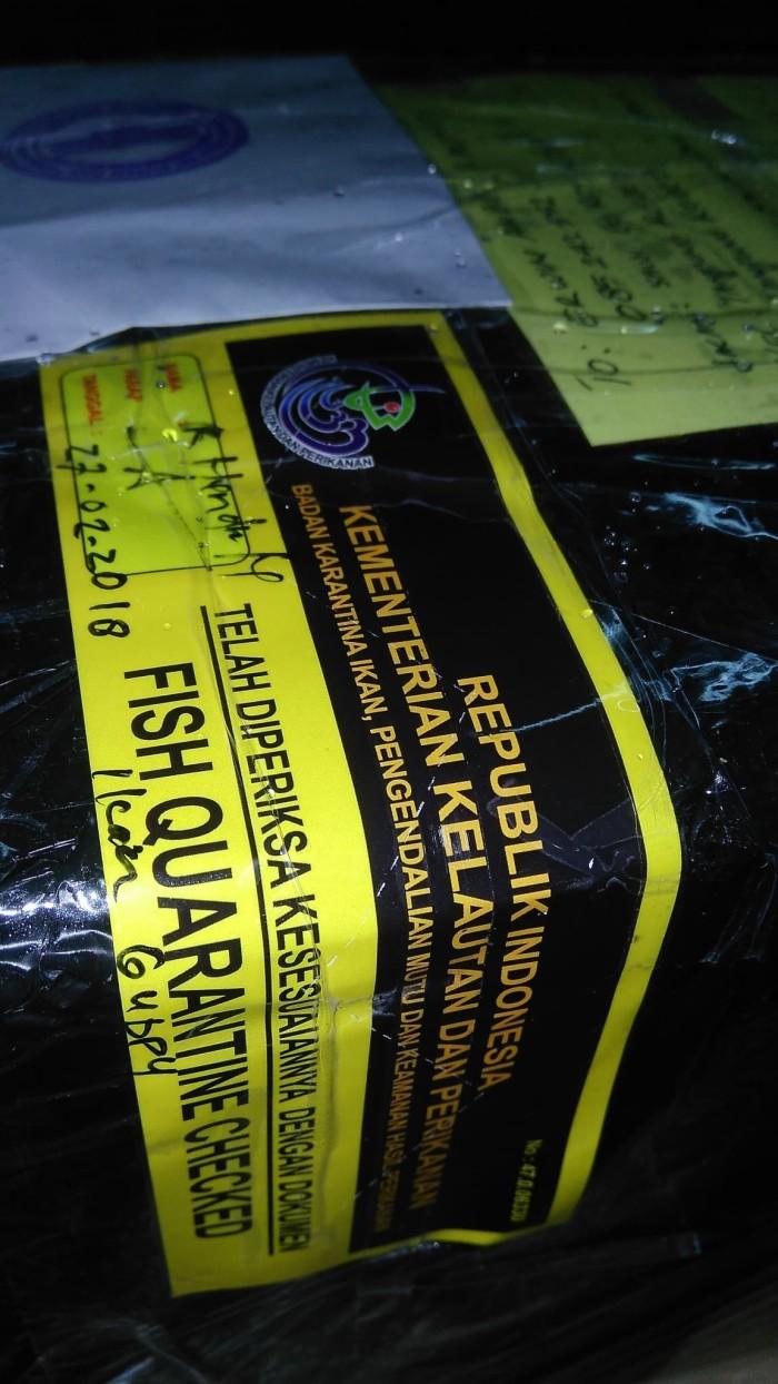 harga Karantina bkipm bandung (sertifikat pengiriman ikan) Tokopedia.com
