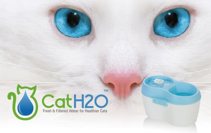 harga Cat h2o pet water fountain dispenser feeder tempat minum kucing hewan Tokopedia.com