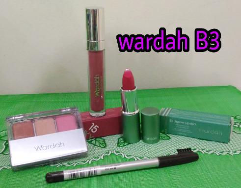 Paket kosmetik wardah eyeshadow mascara wardah blush on bedak
