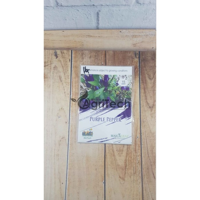 Benih 1 Pack Benih Cabe Ungu Cabai Purple Pepper Maica Leaf 15 Seed