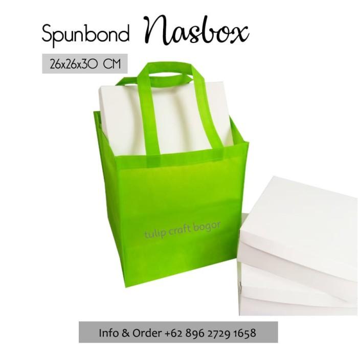 Per 12pc Tas Spunbond 26x26x30cm Kotak Nasi box Hijau Muda Goodiebag