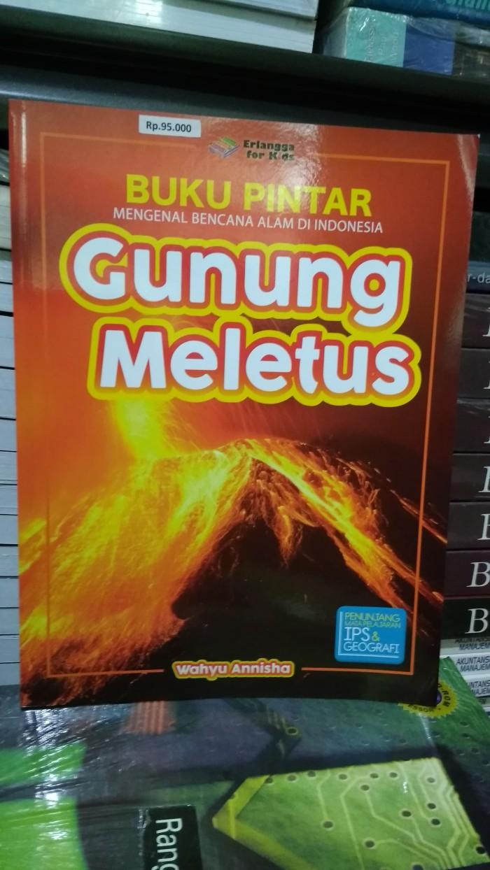 Jual BUKU PINTAR MENGENAL BENCANA ALAM DI INDONESIA GUNUNG MELETUS ERLANGGA Jakarta Pusat Toko Buku Mata Air