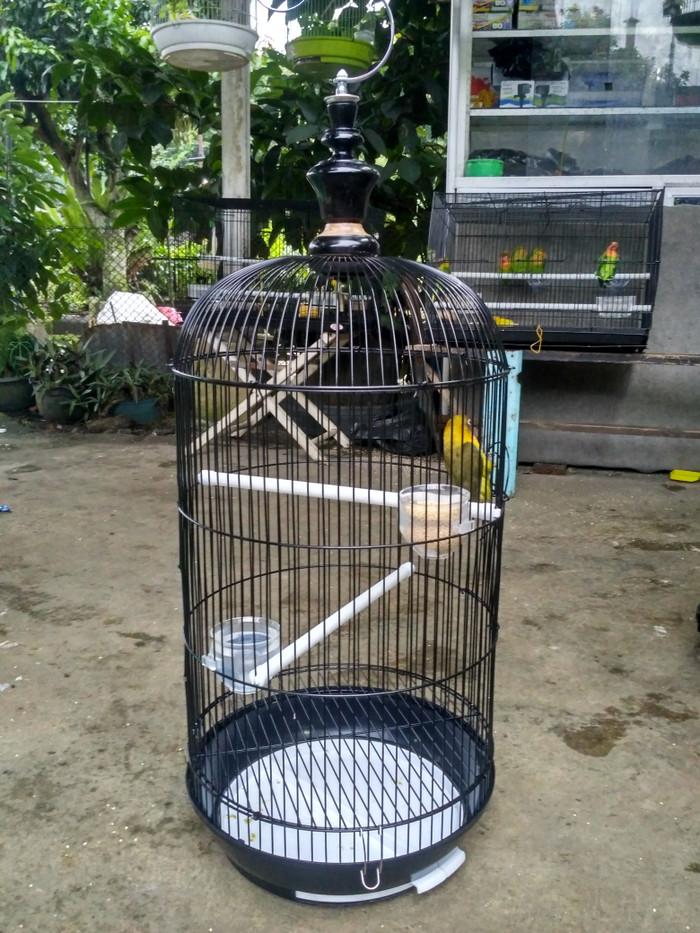 harga Kandang burung love bird tebok baskom Tokopedia.com
