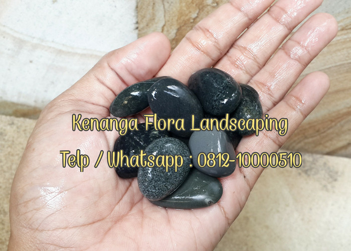 harga Batu koral hitam bengkulu 13kg m Tokopedia.com
