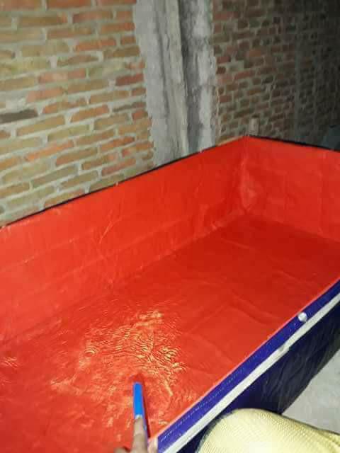 Foto Produk kolam terpal ukurn 1x2 meter tinggi 50cm dari terpal dan plastik