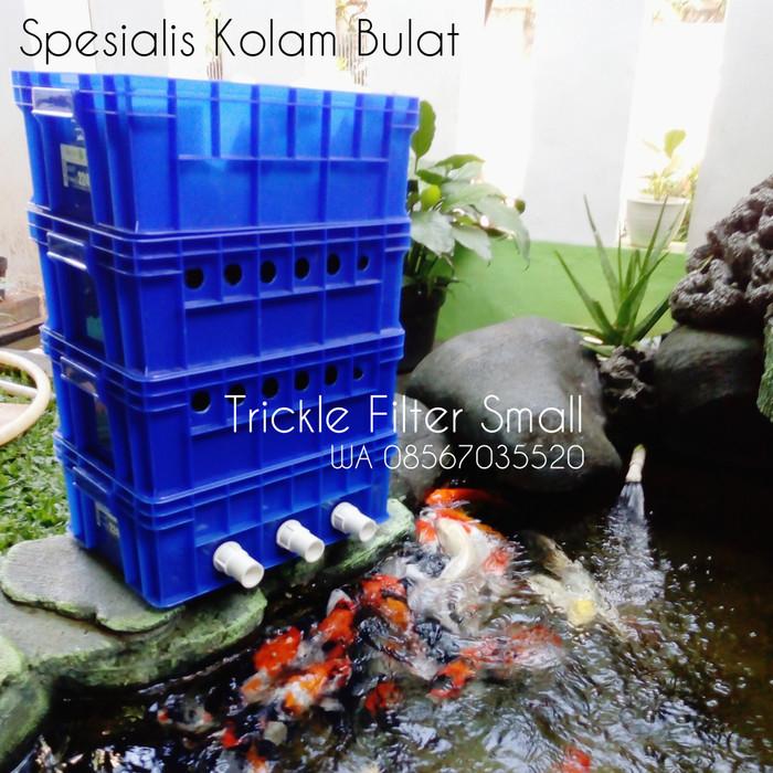 Download 81 Koleksi Gambar Kolam Hias Ikan Koi HD Gratis