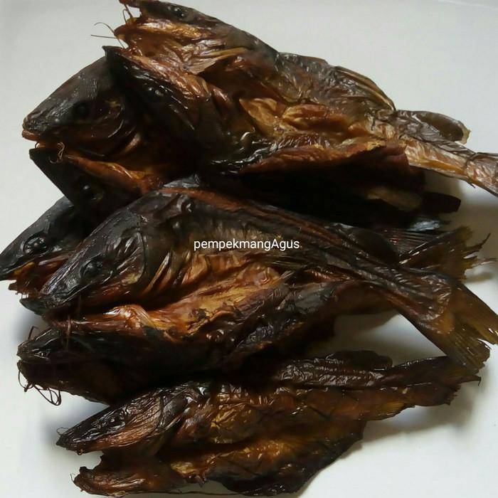 Jual Ikan Salai Baung Baung Asap Kota Palembang Pempek Mang Agus Tokopedia