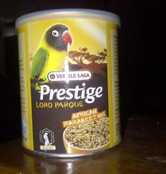 harga Prestige lovebird Tokopedia.com
