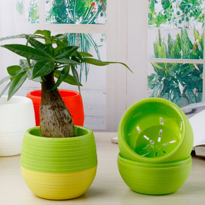 Jual Mini Pot Bunga Hias Kaktus Tanaman - 5pcs - Multi-Color Pot ... d4697aa8f2