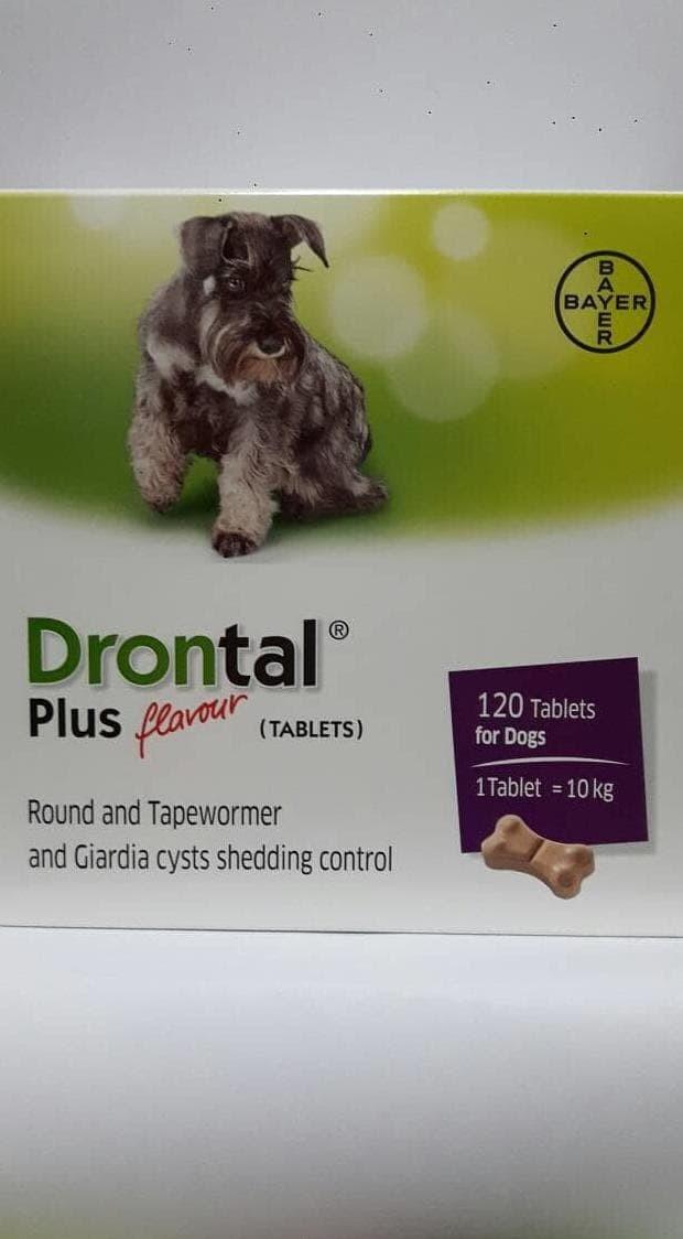 Jual Promo Drontal Plus Dog Obat Cacing Anjing Bagus Dan Terpercaya Jakarta Timur Cinta Senja Tokopedia