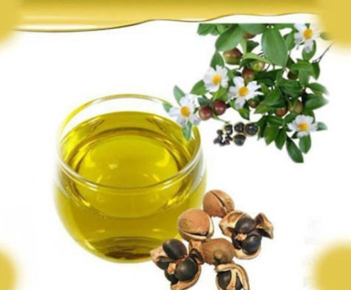 Foto Produk Camellia Seed Oil 20ml/Camelia Seed Oil 20ml/Pure Natural Oil dari Syah-House