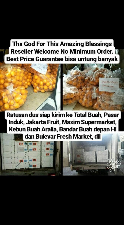 Jual Buah Delima Merah Import Jumbo Harga DIJAMIN MURAH DIBAWAH PASARAN Jakarta Pusat Iqlima Zaitun