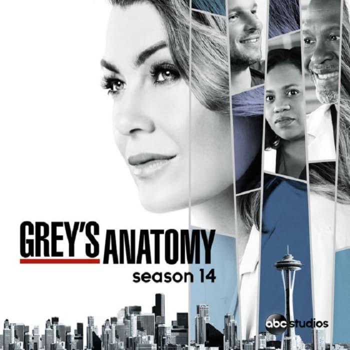harga Kaset dvd serial tv barat grey anatomy season 14 Tokopedia.com