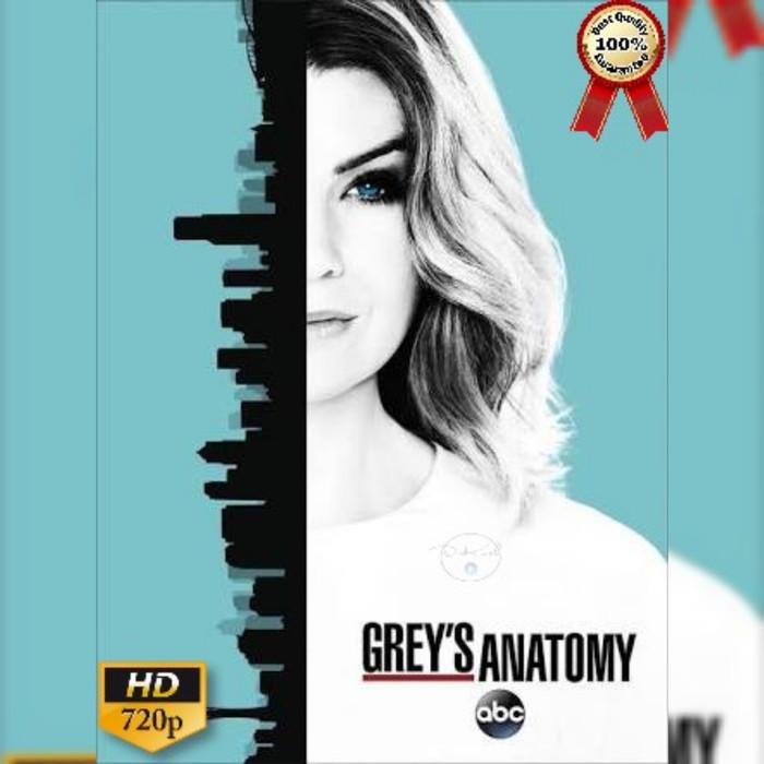 harga Serial tv barat grey's anatomy season 1 - 14 complete Tokopedia.com