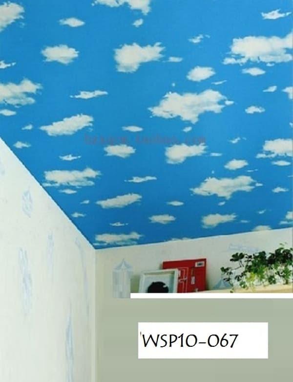 87+ Gambar Awan Di Plafon Paling Keren