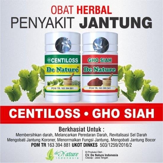 Jual Obat Penyakit Liver Qnc Jelly Gamat Di Lapak Toko: Resep Obat Jantung Bengkak