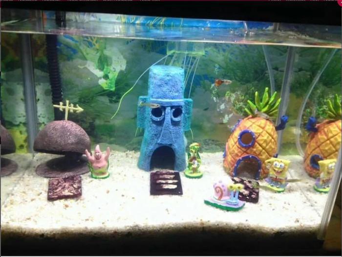 Jual Spesial Hiasan Aquarium Spongebob Kota Banda Aceh Fernandezmarket Tokopedia