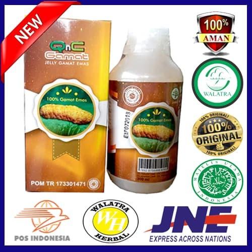 Qnc Jelly Gamat Original - Obat - Gamat - Termurah -Kesehatan-Herbal