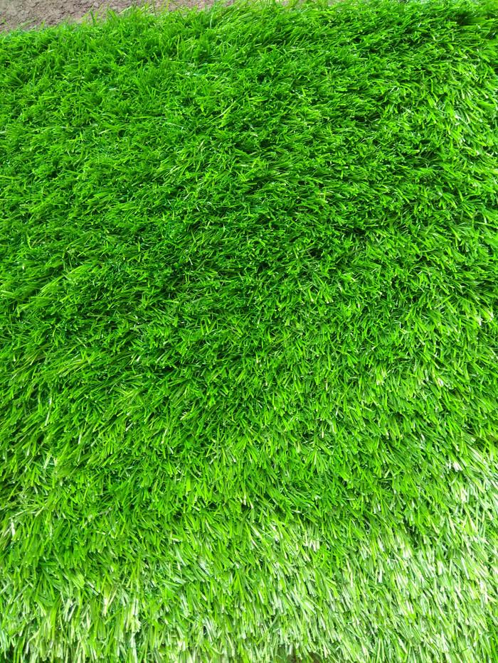 Foto Produk Karpet rumput sintetis 30 mm tipe swiss import langsung dari Simple Store