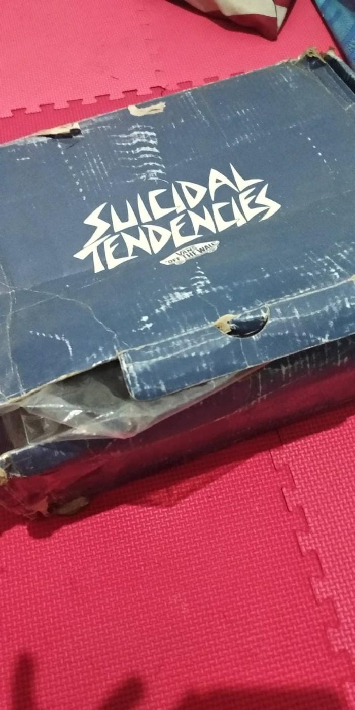 Jual Vans Suicidal Tendencies Sk8 Rare Harga Rp 1260000 Sepatu Sneakers Bones Wtaps Icc