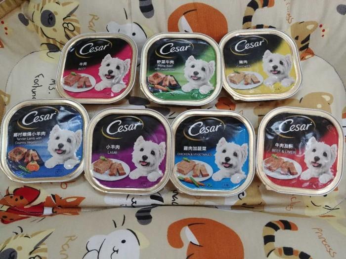 Jual Makanan Anjing Basah Cesar Jakarta Pusat Petshop