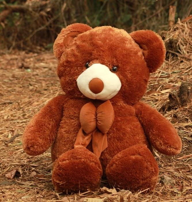 Boneka Teddy Bear Jumbo Boneka Beruang - Theme Park Pro 4k Wallpapers 919c957d75