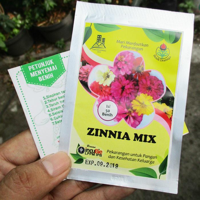 Foto Produk Bunga Zinnia Mix IPB dari mewalik-jaya