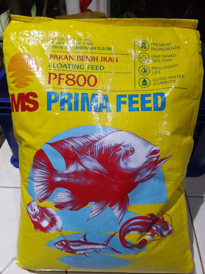 Jual Pakan Makanan Benih Bibit Ikan Lele Nila Gurame Pelet Pf 800 1 Kg Jakarta Timur Saungikan Juga Tokopedia