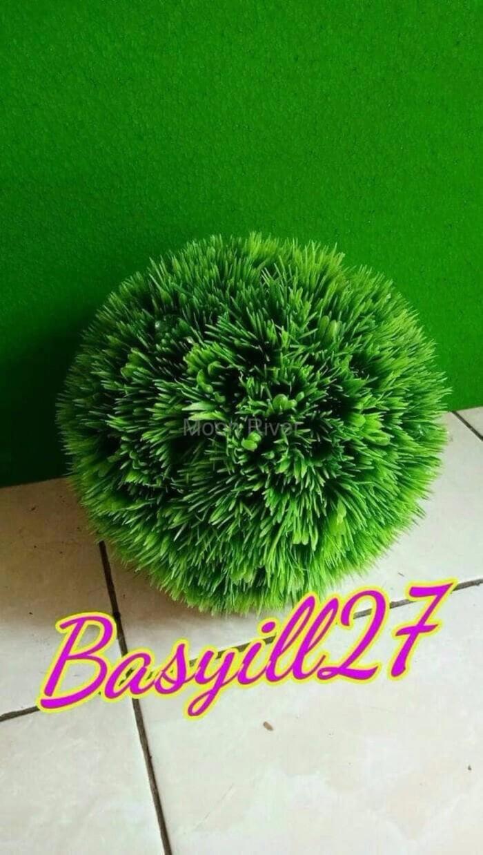 Jual Biji Rumput Bermuda Grass Lapangan Sepak Bola Best Decor Decoration Grosir Palsu 30cm Tanaman Arti