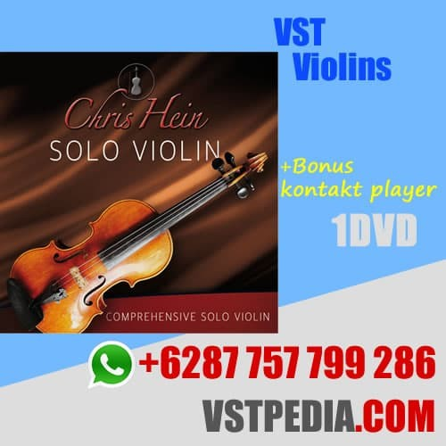 Jual VST Violins - Best Service Chris Hein Solo violins - Kab  Situbondo -  Radja wordpress | Tokopedia
