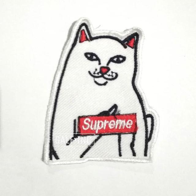 Gambar Kucing Supreme godean.web.id