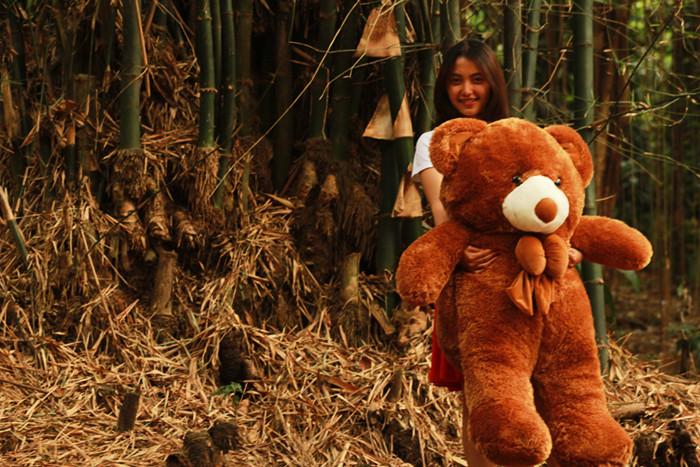Jual Boneka besar lucu Beruang Teddy Bear Cokelat Jumbo 120 CM ... fdd7424b0b
