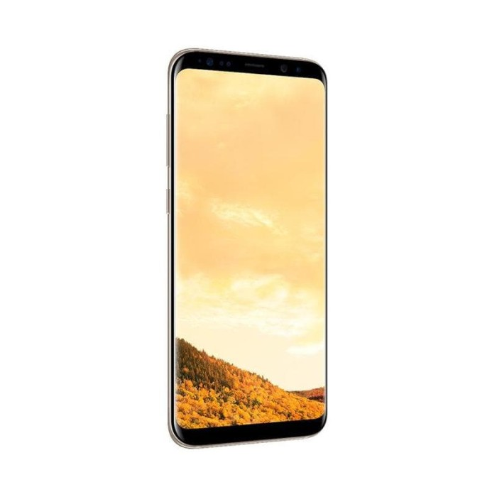 Samsung Galaxy S8 Smartphone - GARANSI RESMI - [64GB/ 4GB] - Hitam