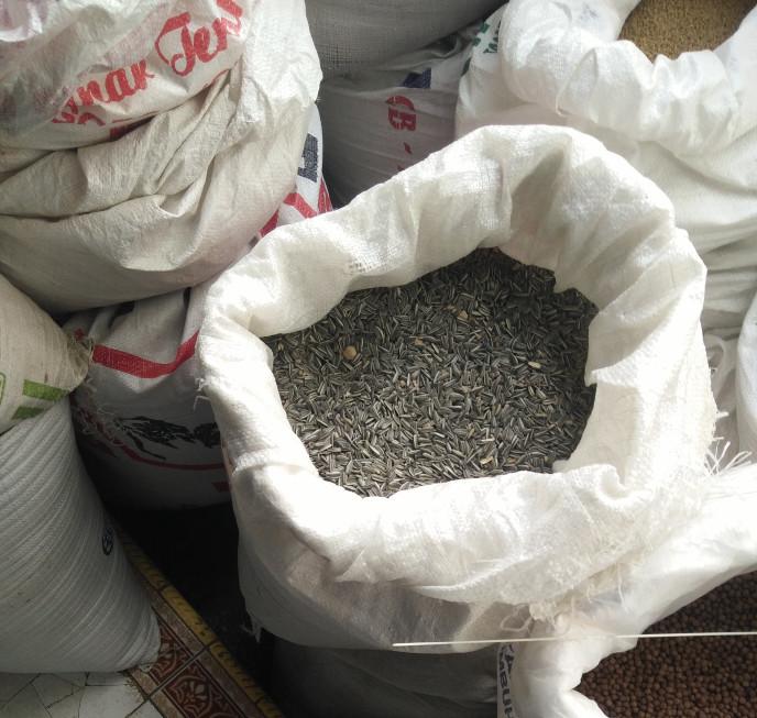 harga 5 kg untuk makanan burung love bird (paling doyan) kwaci dari bunga Tokopedia.com