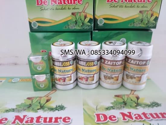 Foto Produk Obat Wasir Ambeien Paket 2 Minggu dari Toko De Nature Ampuh