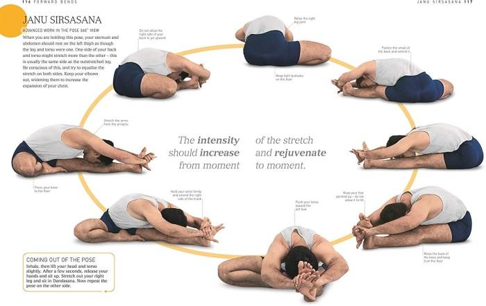 B.K.S. Iyengar Yoga: The Path to Holistic Health (Revised Edition)