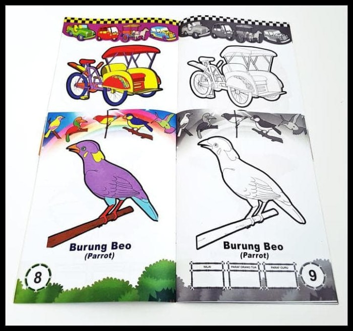 89 Gambar Ayam Untuk Diwarnai Anak Paud Terbaik