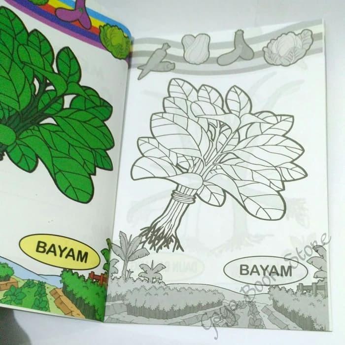 Jual Terbaru Buku Mewarnai Mewarnai Sayuran Sunda Jaya Abadi