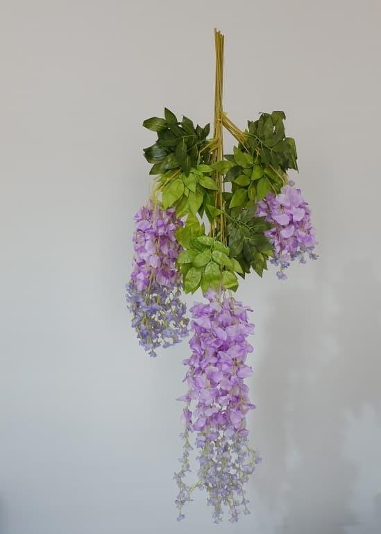 Jual bunga wisteria cek harga di PriceArea.com b6876addfc