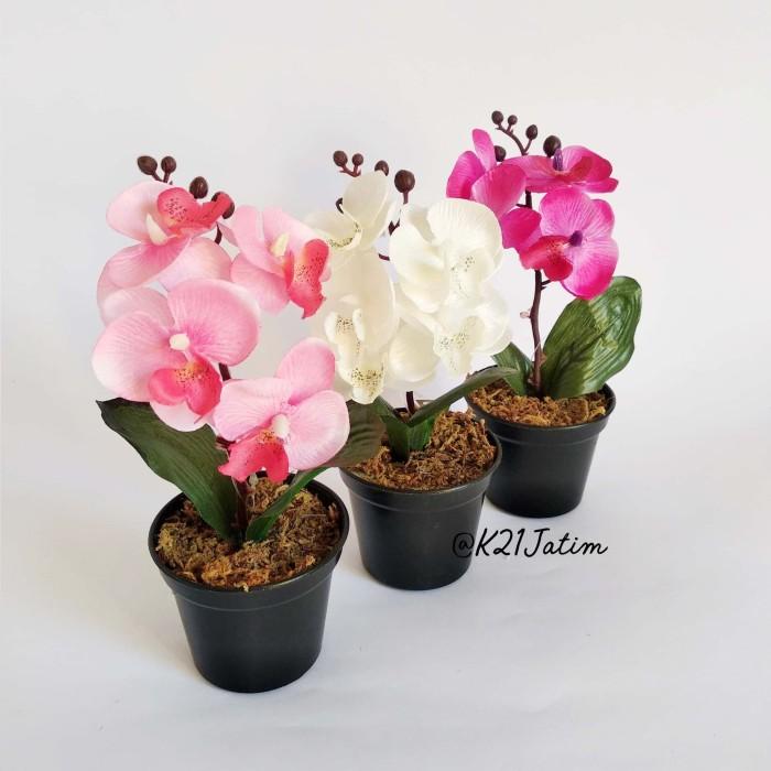 Bunga anggrek imitasi pot bunga mini artificial flower pajangan unik 5c76b076f0