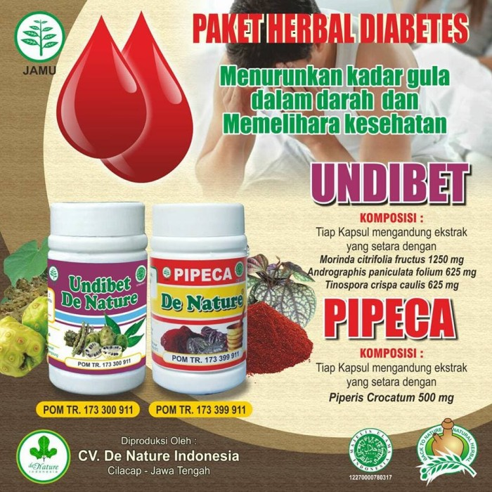 obat tradisional untuk diabetes insípida