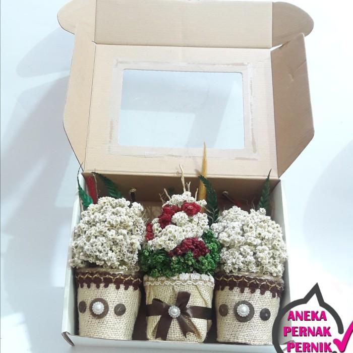 harga Hadiah/kado/hari ibu/bunga/edelweis/valentine/ulang tahun/dried flower Tokopedia.com